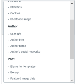 Dynamic Tags Author Post