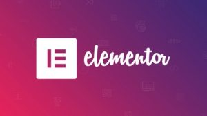 Elementor Dynamic Image