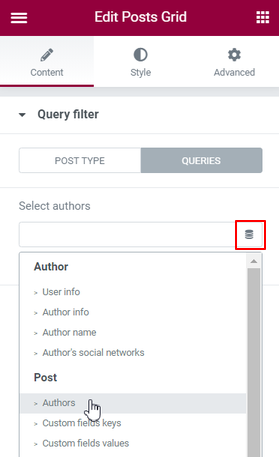 Query filter Dynamic Tag Authors