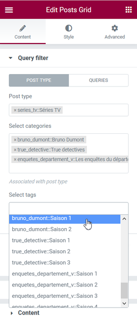 Query filter Tags